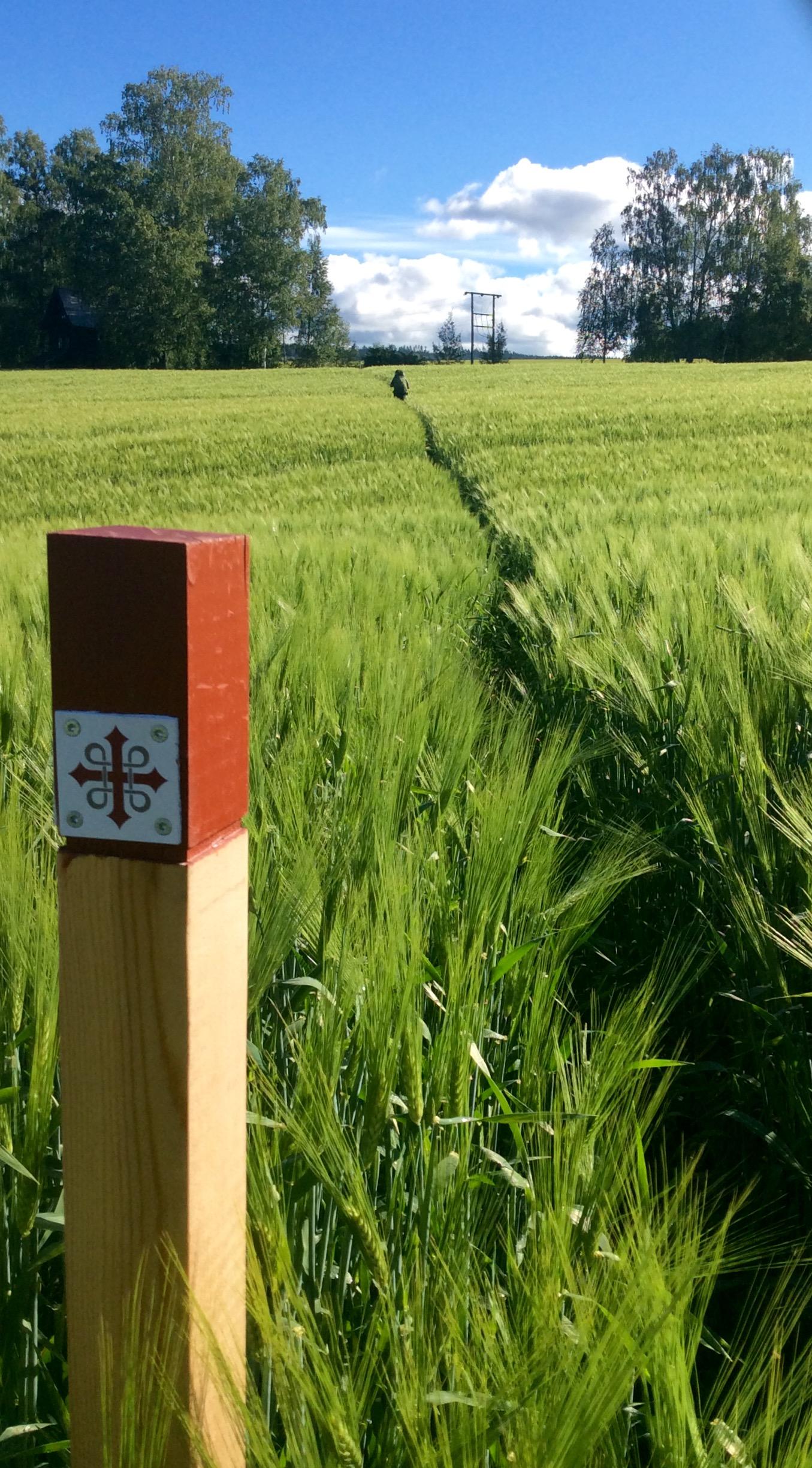 St. Olav Path